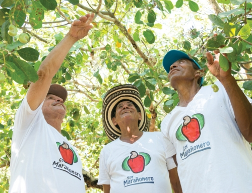 Grupo Nutresa potencia la sostenibilidad en las comunidades marañoneras